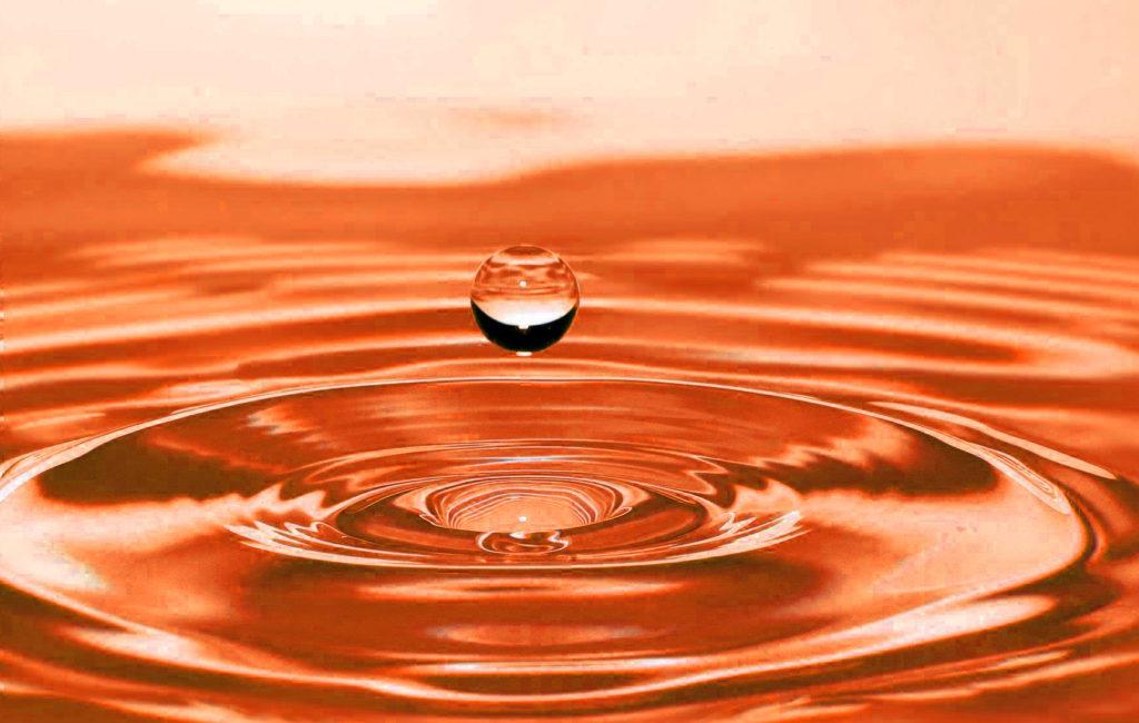 バスボートガソリン水混入